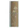 电冰箱BCD-216A香槟金(君子兰)