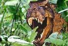 陕西网友发现恐龙