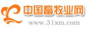 中国畜牧业网