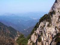 天?#21487;? /></li>         <li>天?#21487;?br />             国家级森林和野生动物类型自然保护区,位于杭州西郊。有东西天目之分,一般指西天目,特有的野生银杏树最早发现于此。</li>         <li>富春江—新安江风景<br />富春江新安江风景名胜区是杭州除西湖外的又一个国家级风景名胜区,下起富阳,中段经桐庐,总面积982平方公里。富春江又以桐庐段最为美。</li>         <li><img src=