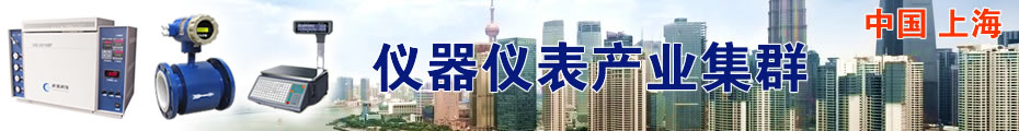Shanghai Instrument Industry Cluster