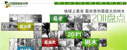 园林苗木2011盘点
